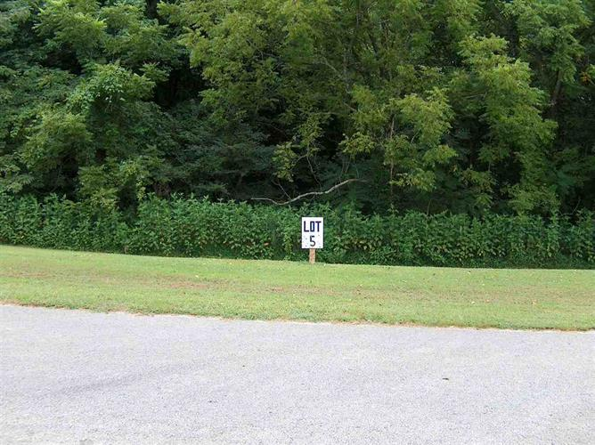 Lot 5 Phoenix Drive, Fountain Run, KY 42133