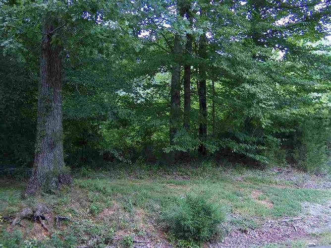 Lot 19 Old River Road, Scottsville, KY 42164