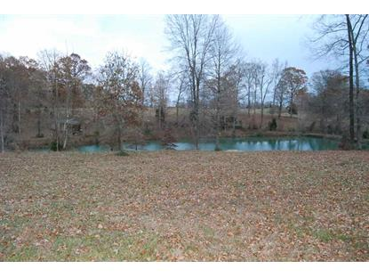 2065 WALKERS CHAPEL RD Adolphus, KY MLS# 20184899