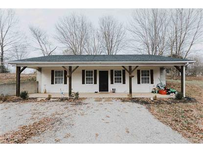 300 Big Springs Rd Scottsville, KY MLS# 20184961