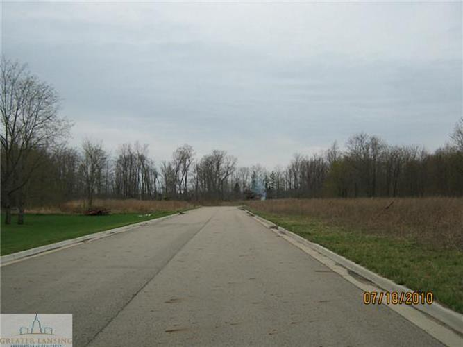 Gunn Road, Holt, MI 48842