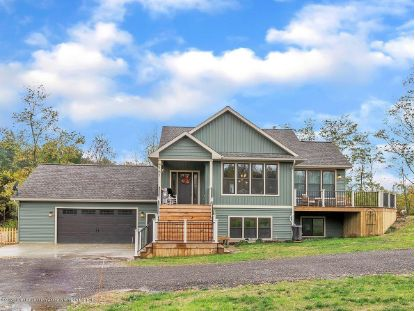4161 Ramble Lane Potterville, MI MLS# 250821