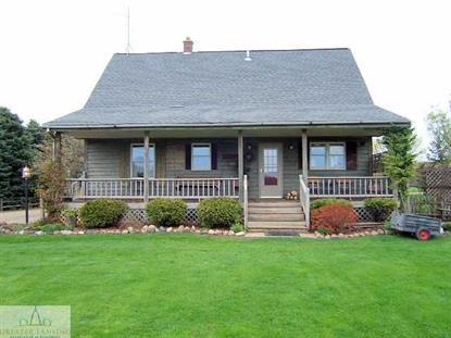11372 S Blair Road, Elsie, MI