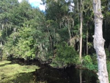 561 County Road 13 S, St Augustine, FL 32092