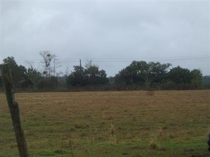 7120 COUNTY ROAD 13 S Hastings, FL MLS# 154578