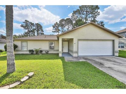 79 Raintree Place, Palm Coast, FL