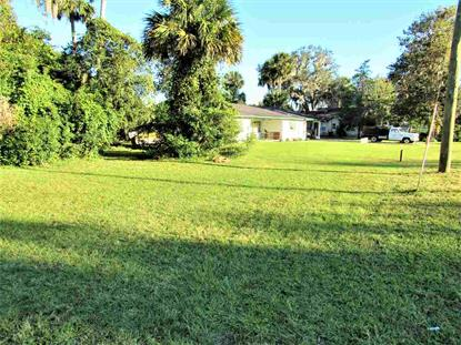0 unassigned Welaka, FL MLS# 186166