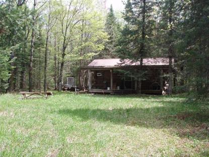 16856 GRIFFITH RD  Butternut, WI MLS# 178637