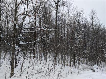 Lot 14 WILD RIVER RD  Glidden, WI MLS# 182401