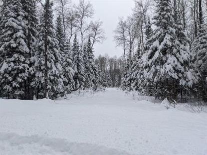 Lot 21 WILD RIVER RD  Glidden, WI MLS# 182406