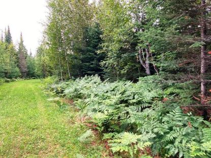 00 Off HWY 13  Butternut, WI MLS# 186195