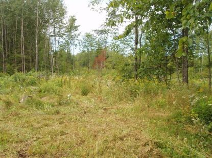 16842 RIGHT OF WAY RD  Glidden, WI MLS# 187095