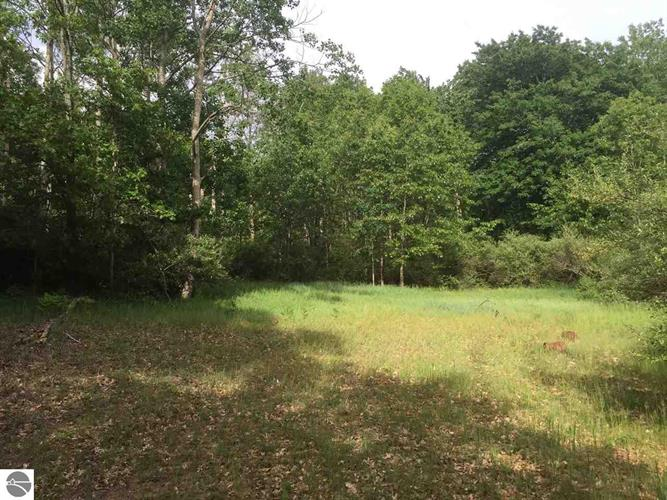 30 acres Loth Lorien Drive, Traverse City, MI 49686