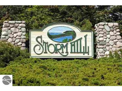 11750 (Lot 25) N Storm Hill Drive  Empire, MI MLS# 1799889