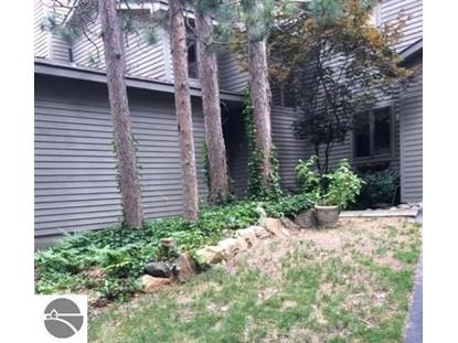 3005 Wild Juniper Trail , Traverse City, MI