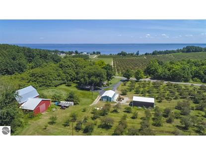 15259 Smokey Hollow Road  Traverse City, MI MLS# 1856963