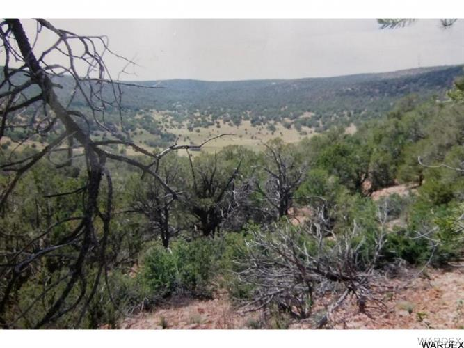 155 Acres Near Peach Springs, Peach Springs, AZ 86434