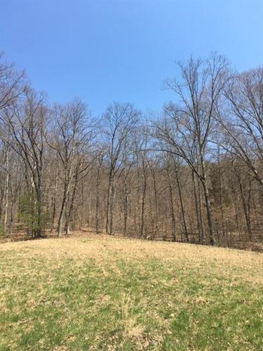 369 Woods Creek Drive, Somerset, KY 42503