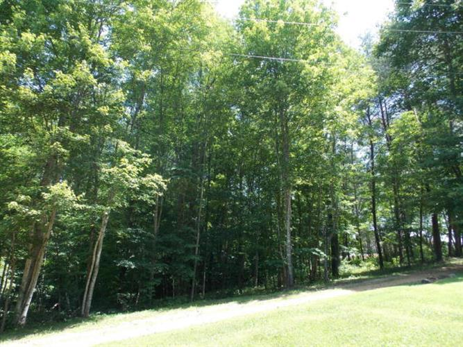 Lot 84&85 Golden Pond Road, Monticello, KY 42633 - Image 1