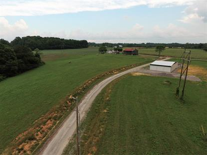 16 Wolf Creek Crossing Road Jabez, KY MLS# 24007