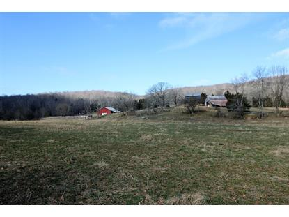 2330 Denney Hollow Road Monticello, KY MLS# 33066