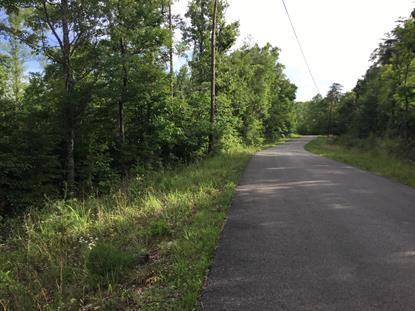 007 Cave Springs Rd - Tract 7a  Jabez, KY MLS# 34722