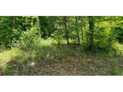 19 Big Rock Run Road Somerset, KY MLS# 38920