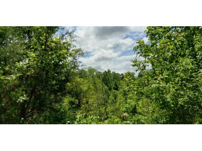 24 Big Rock Run Somerset, KY MLS# 38935