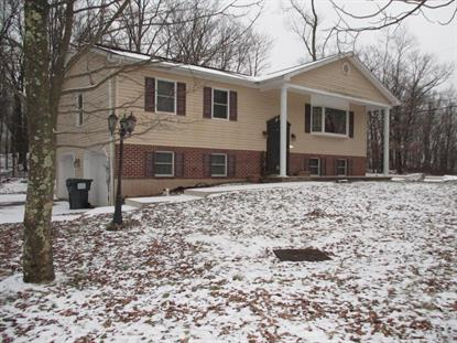 235 Spring Mountain Drive Zion Grove, PA MLS# 19-283