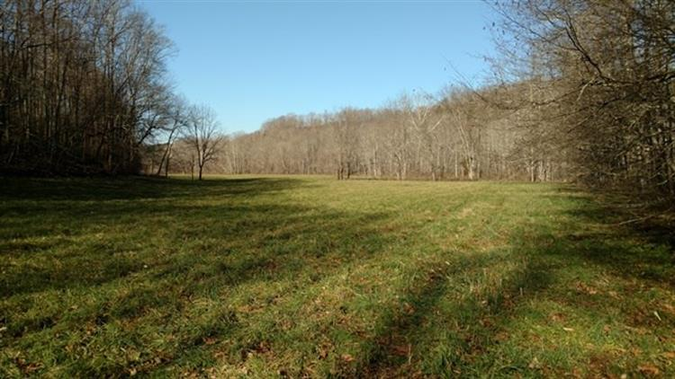 2515 TERRELL CREEK ROAD, London, KY 40743