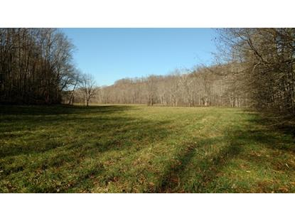 2515 TERRELL CREEK ROAD , London, KY