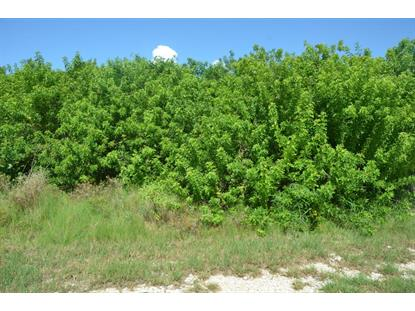 Basque Lane Cudjoe Key, FL MLS# 579736