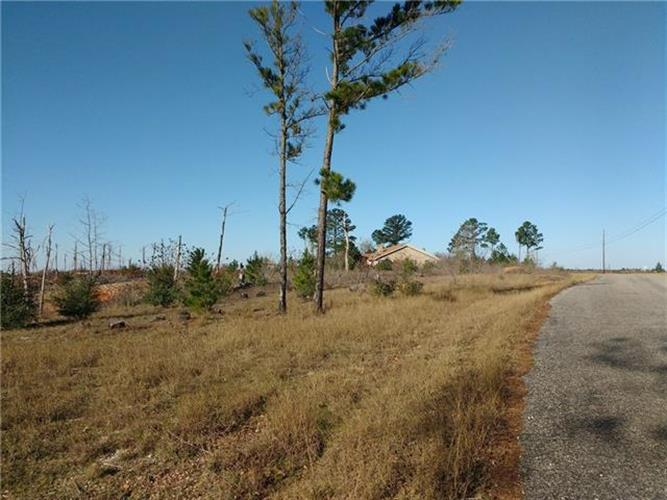 lot 6  Tall Forest, Bastrop, TX 78602 - Image 1