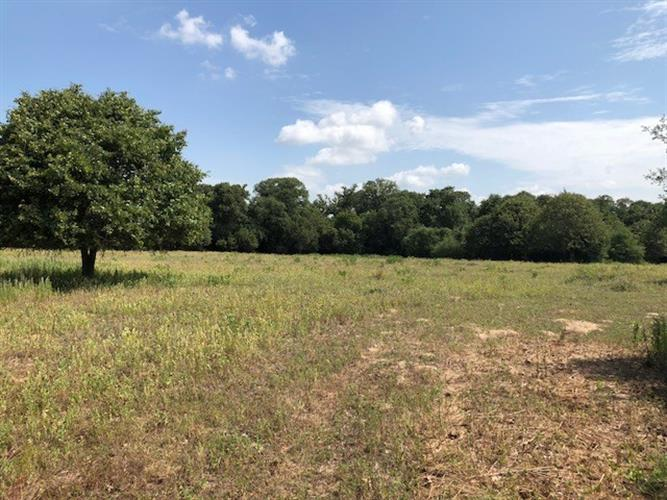 1320  Private Road 4055 lot 4, Lexington, TX 78947