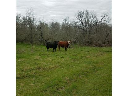 22.063 acres  HWY 21 Cedar Creek, TX MLS# 3358022