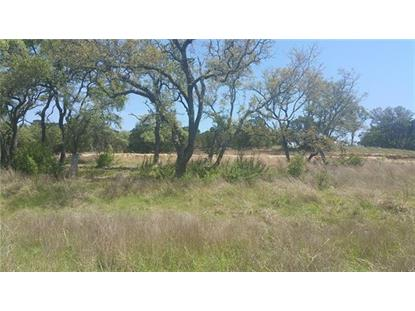 175  Evelyn Ct Dripping Springs, TX MLS# 8101432