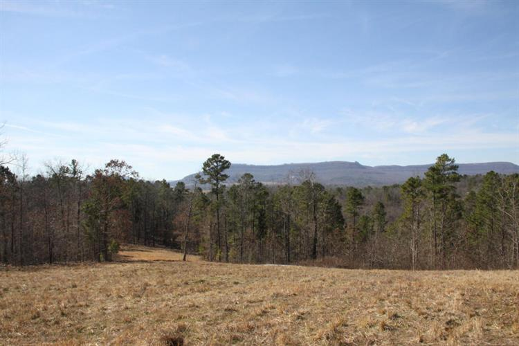 Lot 7 Buffalo River Estates, Jasper, AR 72641