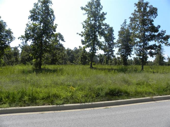 Henley, Lot 2 Drive, Harrison, AR 72601