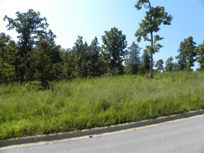 Henley, Lot 1, Harrison, AR 72601