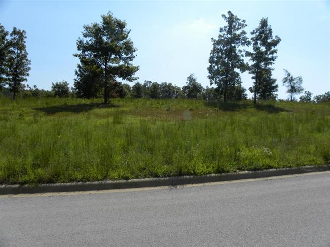 Henley, Lot 3 Drive, Harrison, AR 72601