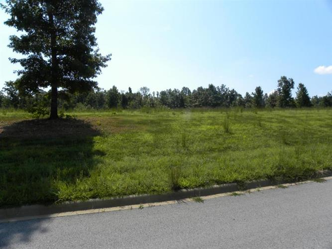 Henley, Lot 4 Drive, Harrison, AR 72601