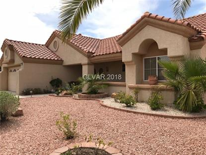 2821 TUMBLE BROOK Drive, Las Vegas, NV