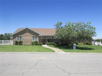 375 TRES COYOTES Avenue, Overton, NV