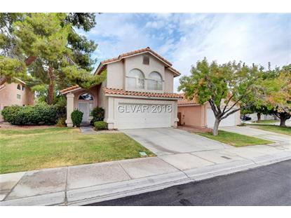2804 TORTOISE Court Henderson, NV MLS# 2038153