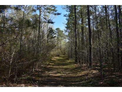 74 AC Tucker Swamp  Ivor, VA MLS# 10189840