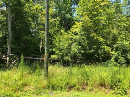 .26 AC BARTLETT  Isle of Wight, VA MLS# 10275871
