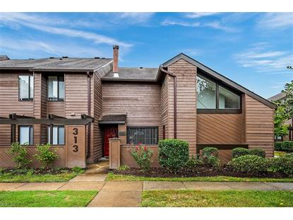 313 Rutherglen Muse  Virginia Beach, VA MLS# 10285423
