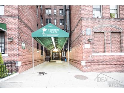 2913 Foster Avenue Brooklyn, NY MLS# NEST-63494