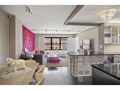 268 East Broadway New York, NY MLS# RLMX-016260021015