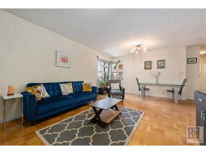 455 FDR Drive New York, NY MLS# RPLU-624112296335